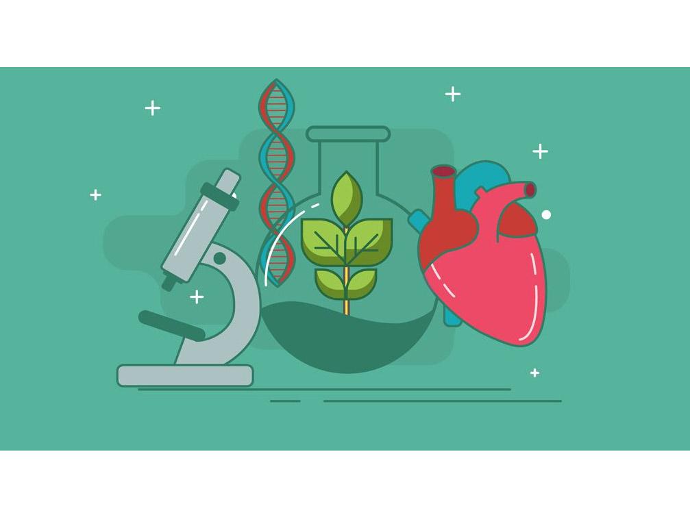 Học IB Biology nên tham khảo giáo trình nào