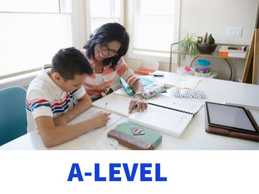What criteria do A-level tutors need to meet?